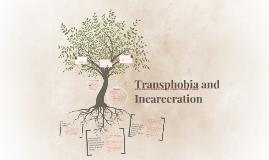 Transphobia and Incarceration