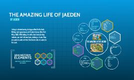 THE AMAZING LIFE OF JAEDEN