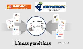 Líneas genéticas