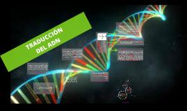 Copy of TRANSCRIPCION  DEL ADN