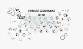 Presentacion Norma STPS equipo Optimizacion