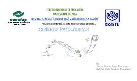 Copy of Cuneros Patologicos