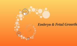Embryo & Fetal Growth