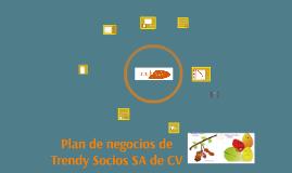 Plan de negocios de Trendy Socios SA de CV