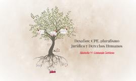Copy of Desafíos: CPE, pluralismo jurídico y Derechos Humanos