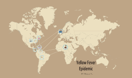 Yellow Fever Epidemic