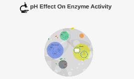 pH effect on Enzyme Activity
