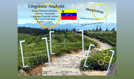 Linguistic Analysis
