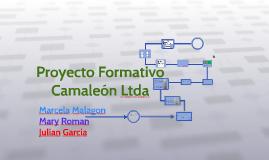 proyecto camaleon