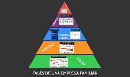 FASES EMPRESA FAMILIAR