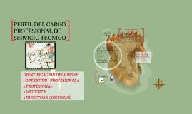 PERFIL DEL CARGO PROFESIONAL DE SERVICIO TECNICO