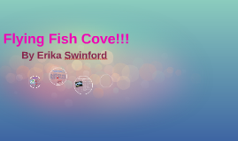 Flying Fish Cove!!!