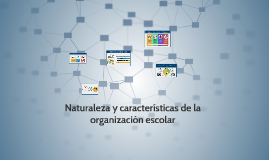 Naturaleza y características de la organización escolar