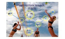 Copy of Copy of Voley Playa