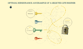 OPTIMAL REINSURANCE: AN EXAMPLE OF A SELECTED LIFE INSURER