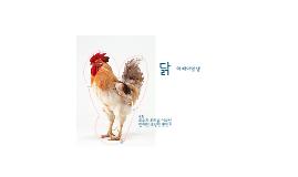 Copy of 닭의 배아발생과정