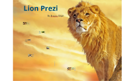 African Lion Prezi