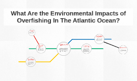 What Are the Environmental Impacts of Overfishing In The Atl