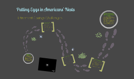 Copy of Putting Eggs in Americans' Nests