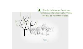 Copy of Diseño del Área de Recursos Humanos en la Empresa Servicios