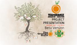 Team Orange Project Presentation Ver. Beta 0.9