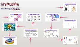 Copy of Citología - Célula