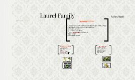 Laurel Family