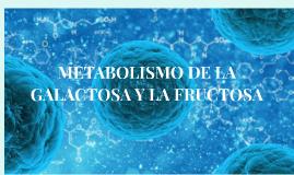Metabolismo de la fructosa y la galactosa