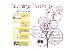 Copy of nursing portfolio by cathy graham on prezi for Nursing professional portfolio template