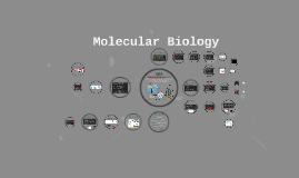 Chapter 10: Molecular Biology