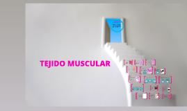 Copy of TEJIDO MUSCULAR