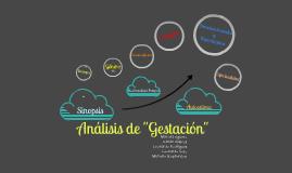 Copy of Análisis de la Pelicula Gestación