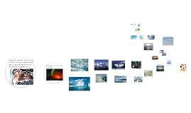 Общая политико-географическая характеристика Арктического региона