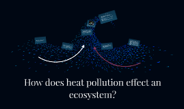 How does heat pollution effect an ecosystem?