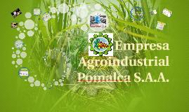 Audi TI Agroindustrial Pomalca S.A.A.