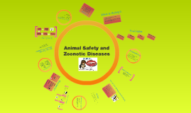 Animal Safety and Zoonotic Diseases