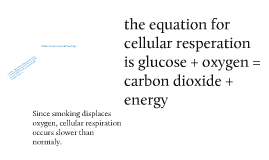 Copy of cellular respiration and smoking