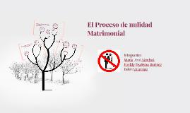 El Proceso de nulidad Matrimonial