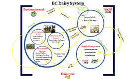 BC Dairy System