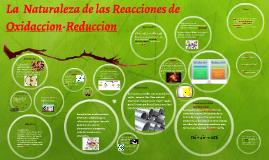 La  Naturaleza de las Reacciones de Oxidaccion-Reduccion