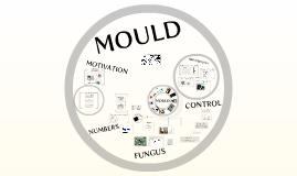 Mould-2009