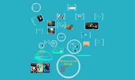 COM401 presentation