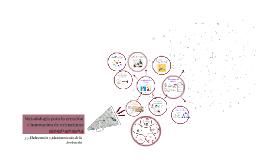 Metodologia para la creación e innovacion de estructuras org