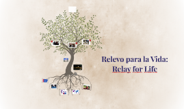 Releveo