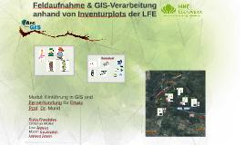 Copy of Feldaufnahme & GIS-Verarbeitung anhand Inventurplots der LFE