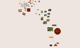 Principais habitats produtores de cogumelos.
