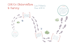 CUR506 Observation/Survey