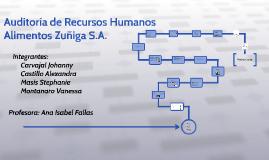 Auditoria de Recursos Humanos Alimentos Zuñiga S.A.