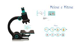 Copy of Meiose e Mitose