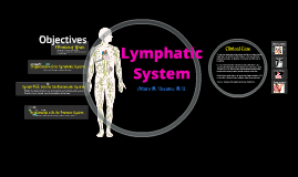 Copy of Lymphatic System